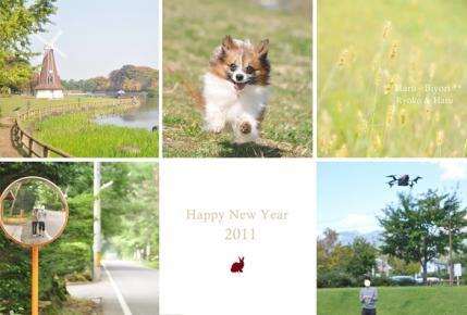 2011 ブログ用