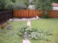 落ちて来た木の枝