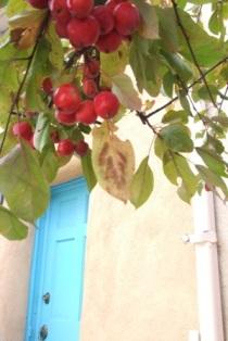 赤い実とドア