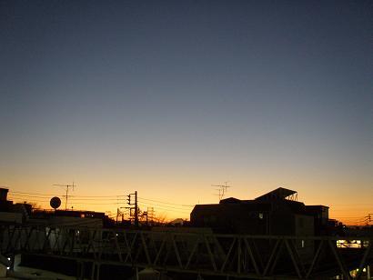 P1141130.jpg