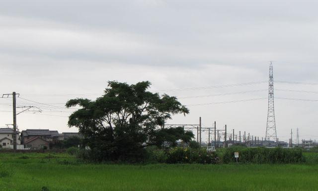 関西本線・白鳥信号場付近