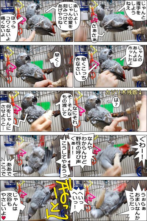 ノンフィクション劇場-No.81-1