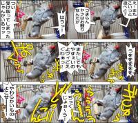 ノンフィクション劇場-No.81-2