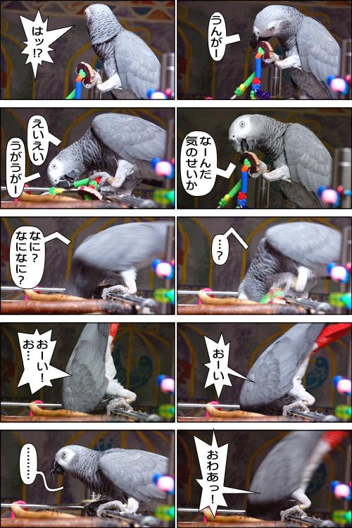 ノンフィクション劇場-No.84