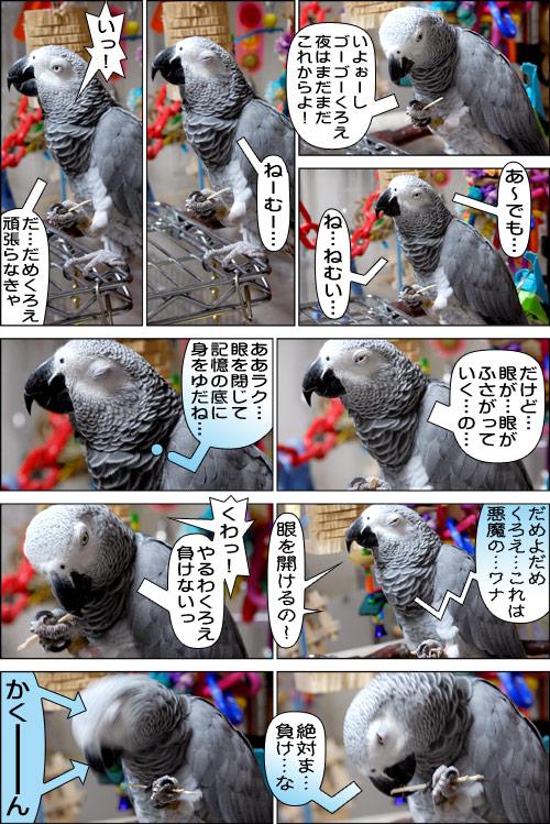 ノンフィクション劇場-No.85