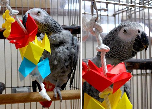 吊し折り紙とJean-Luc
