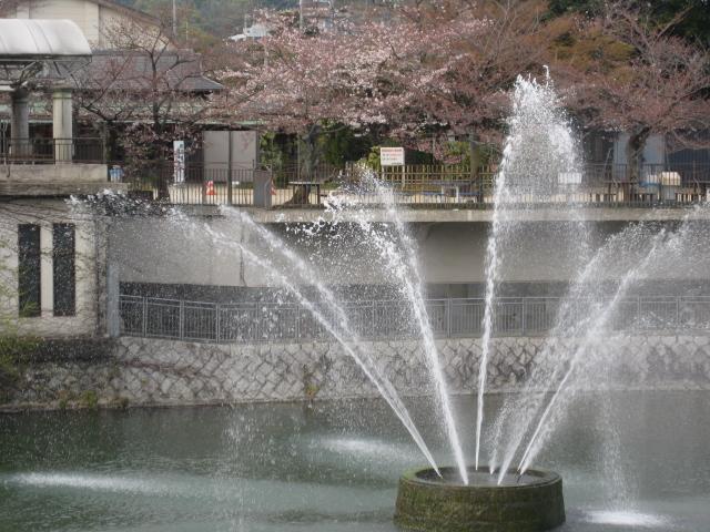 kyoto 113