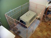 2009-1-21hotel3.jpg