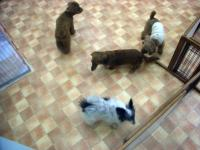 2009-1-31hotel11.jpg