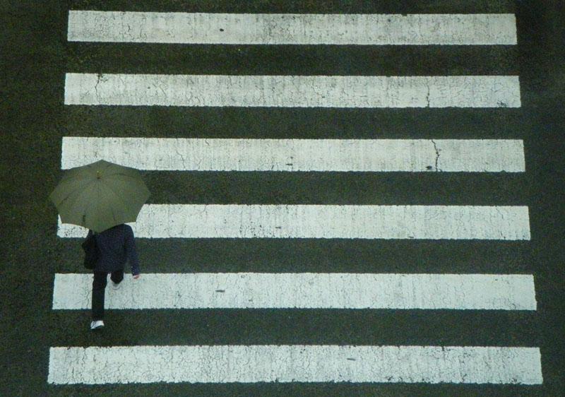 090628雨の日曜日1