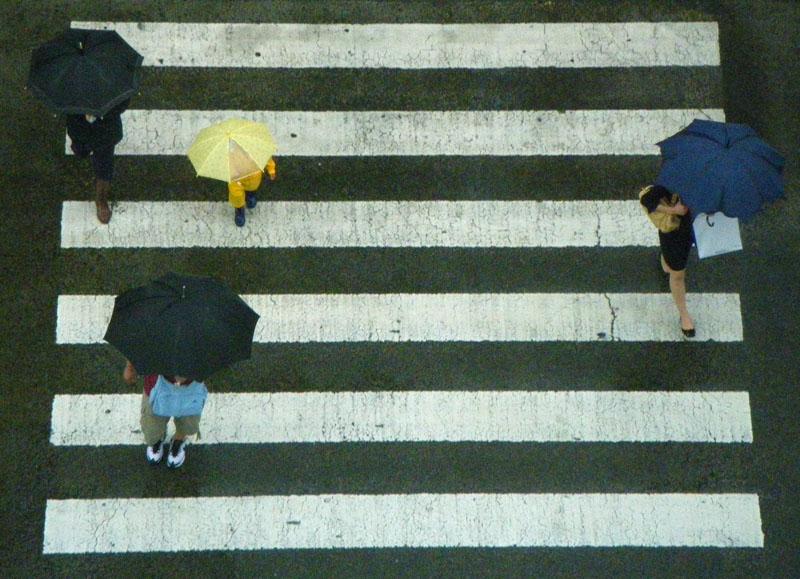 090628雨の日曜日2