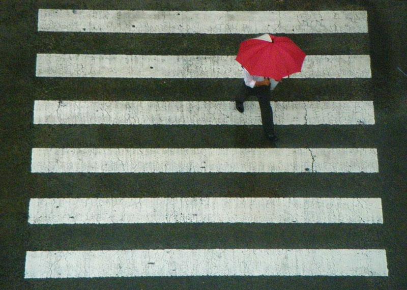 090628雨の日曜日3