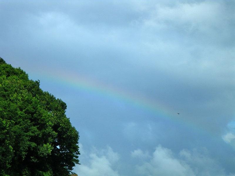090724今日の虹2