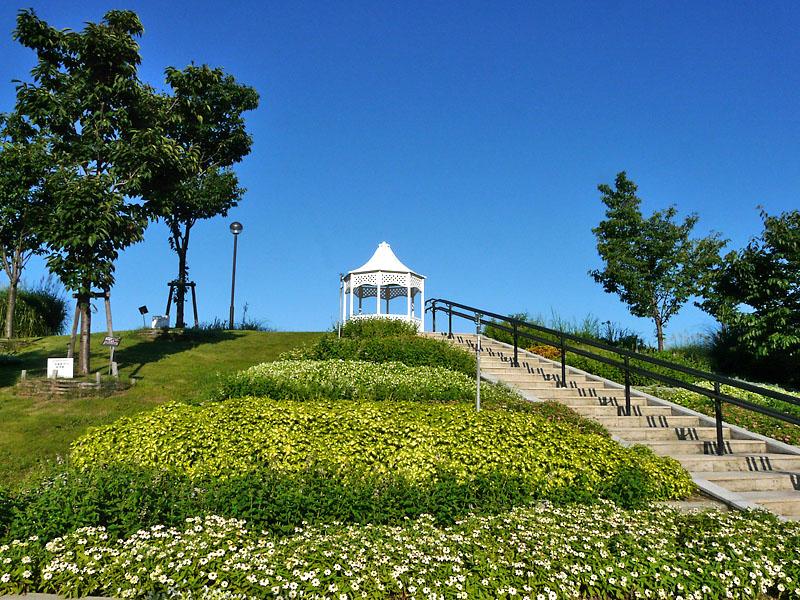 090814明石海峡公園1.5