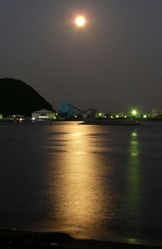 091004久里浜海岸月5