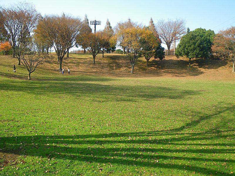 091128清水ヶ丘紅葉5