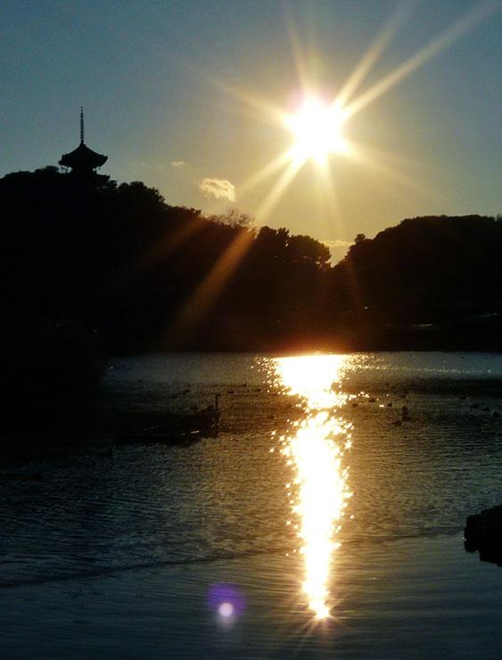 三溪園夕景1