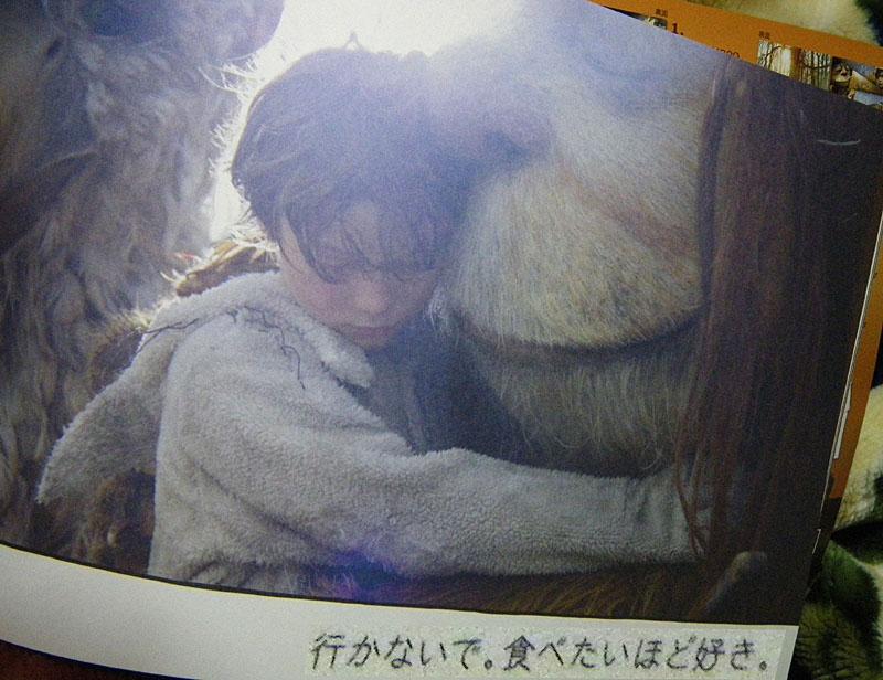 かいじゅうたち5