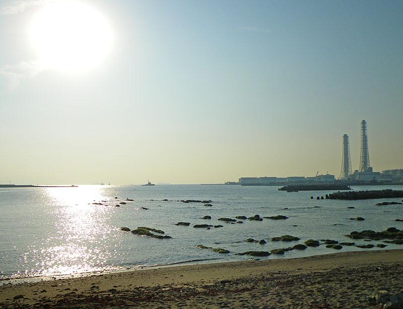 100131朝の長瀬海岸1