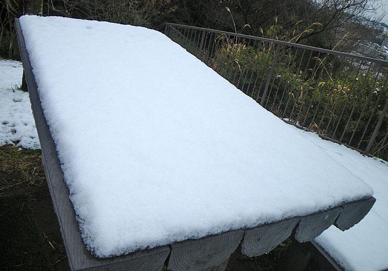 100202雪景色@横浜市南区5