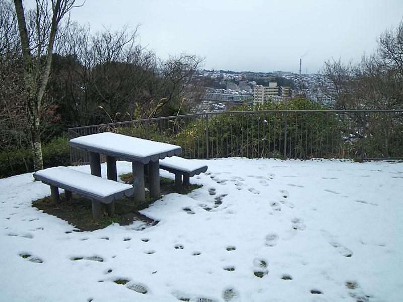 100202雪景色@横浜市南区4