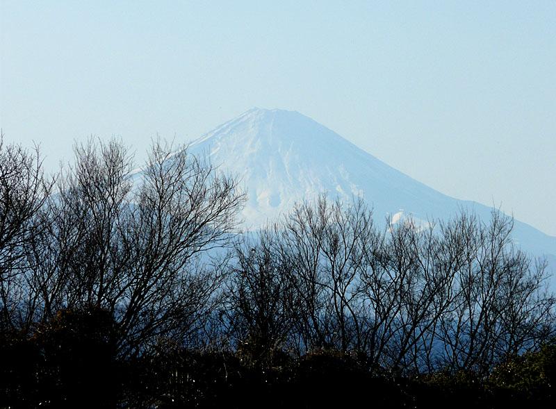 100207三崎からの富士4