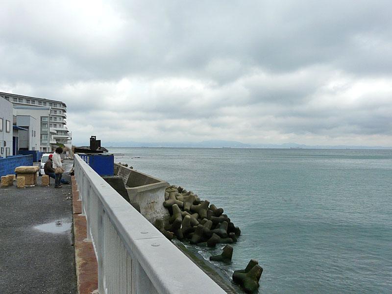 津波を見に行く2