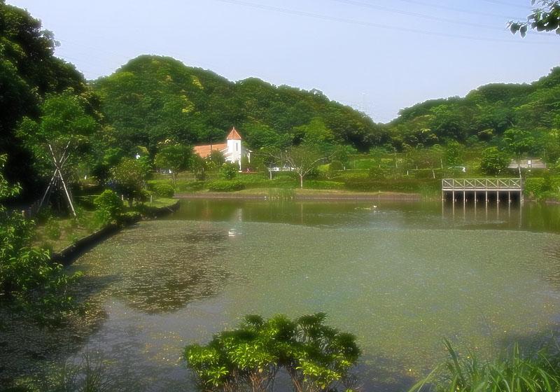 100522YRP水辺公園7