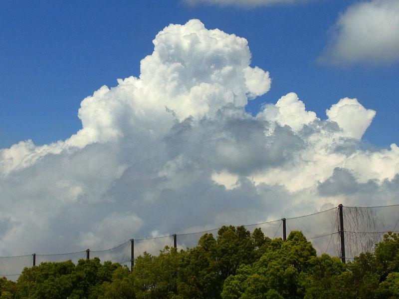 100527プチ入道雲2