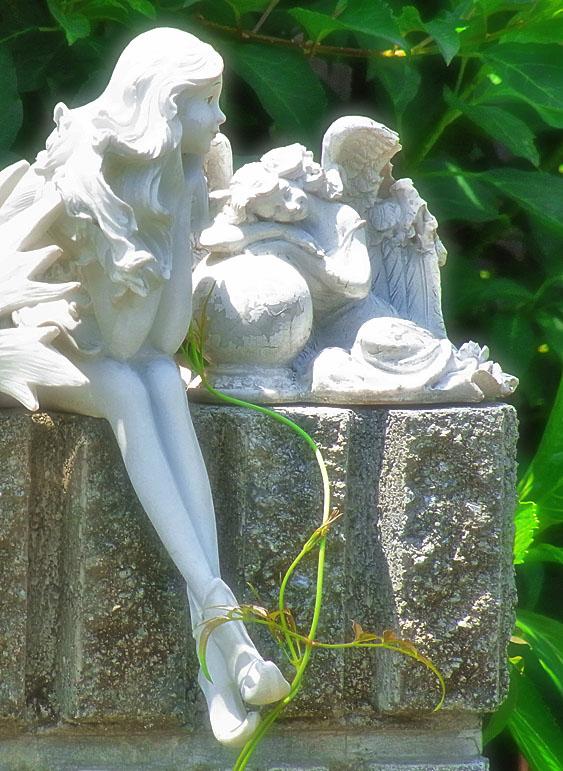 100610花と天使3