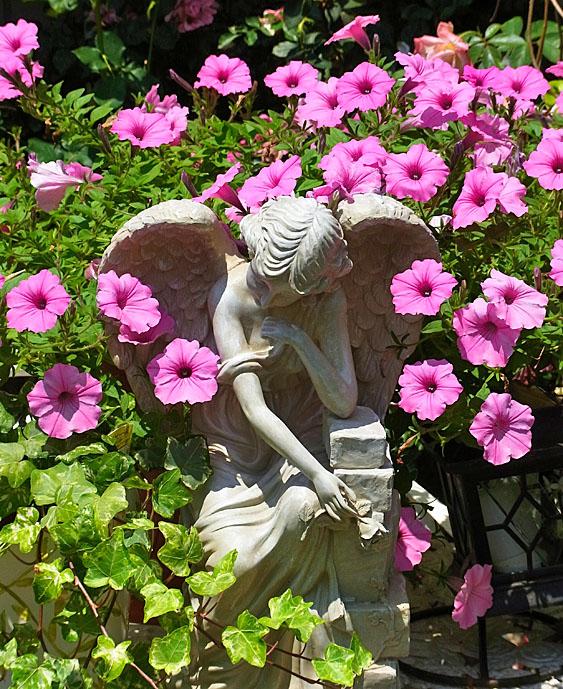 100610花と天使1