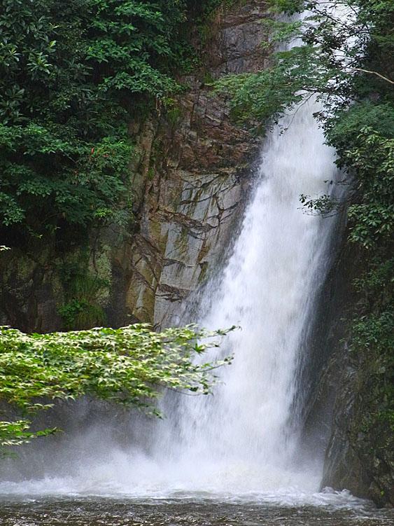 100812布引の滝4