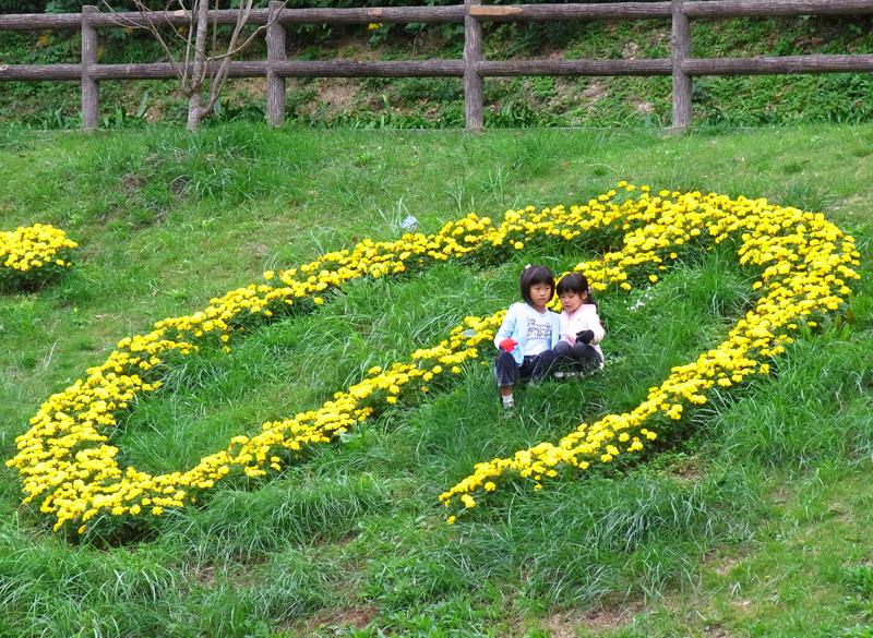 101024今日の花の国5