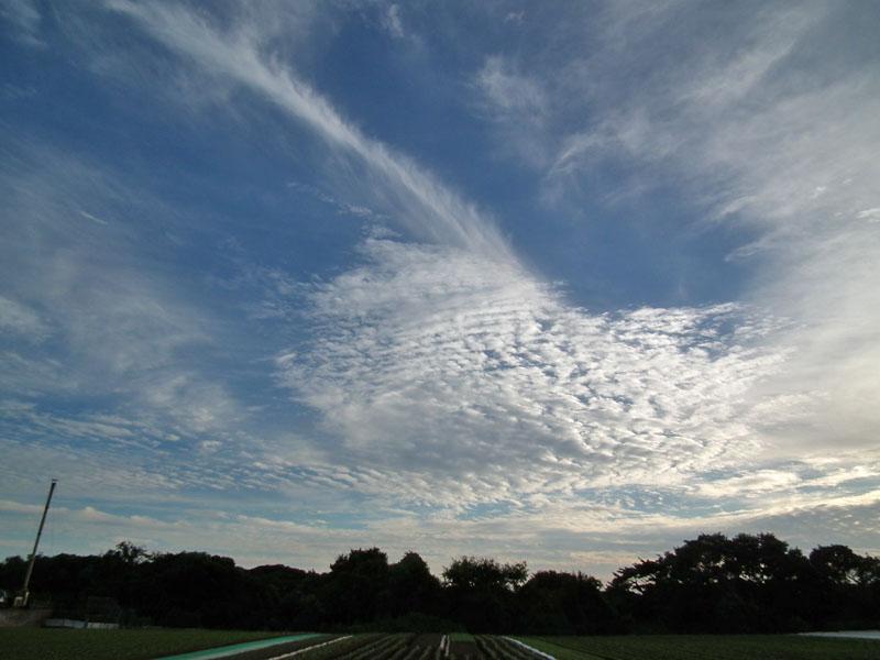 101023竜巻のような雲4