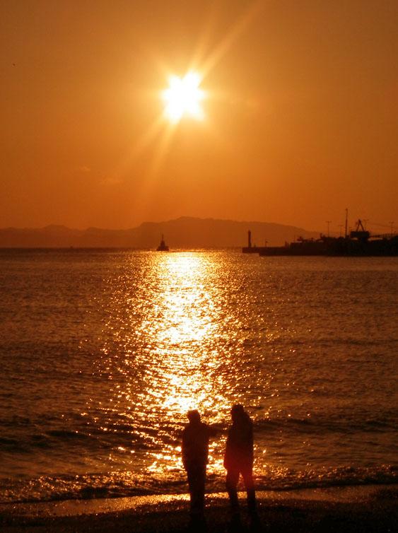 101128今朝の久里浜海岸3