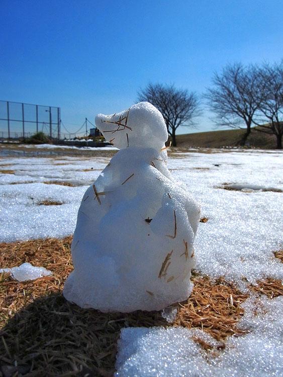 110215雪一過2