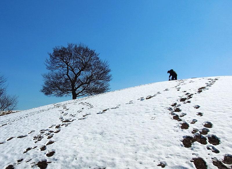 110215雪一過1