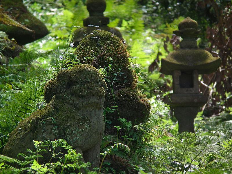 110417若宮神社狛犬3