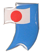 flag-pin.png