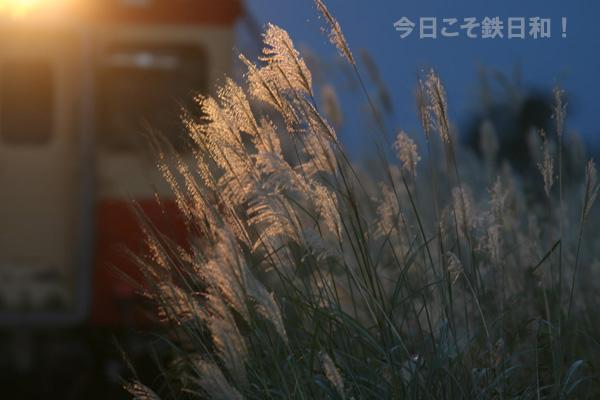 米坂線成島