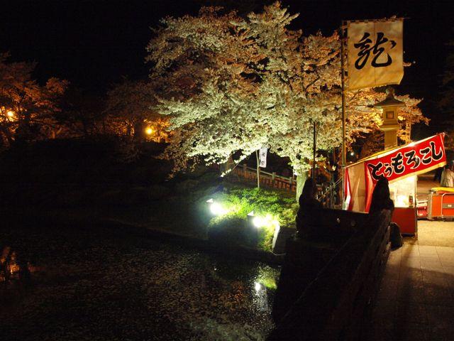 yosakura1