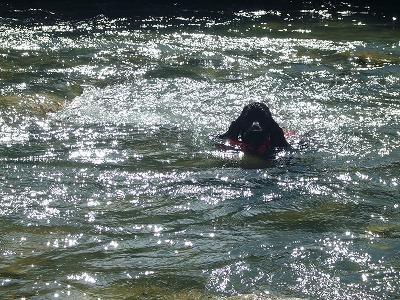 泳ぎ納め6