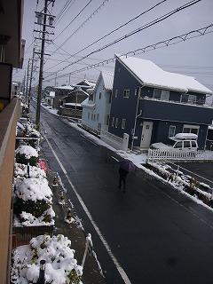 雪積もる1