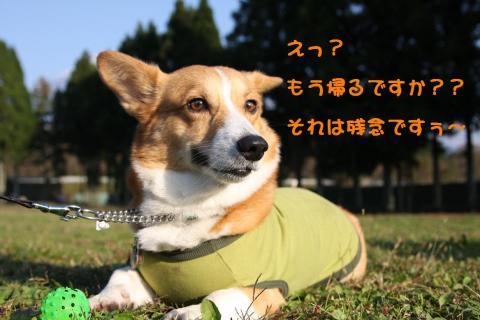 IMG_3658_20091125184114.jpg