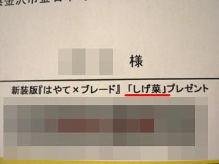 090225しげ菜2