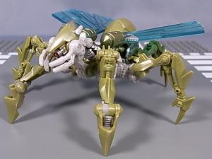 TF HD INSECTICON 1016