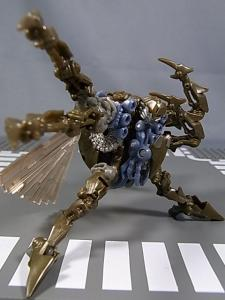 TF AA INSECTICON 1011