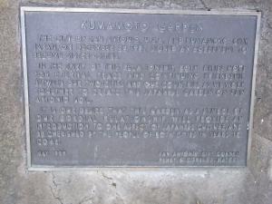 サンアントニオ植物園内:熊本園 1004