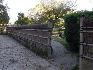 サンアントニオ植物園内:熊本園 1005