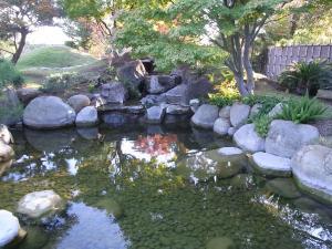 サンアントニオ植物園内:熊本園 1006
